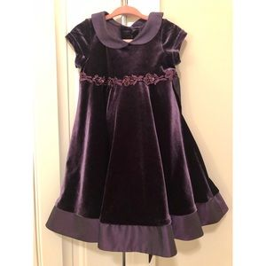 Deep Purple Velvet Dress